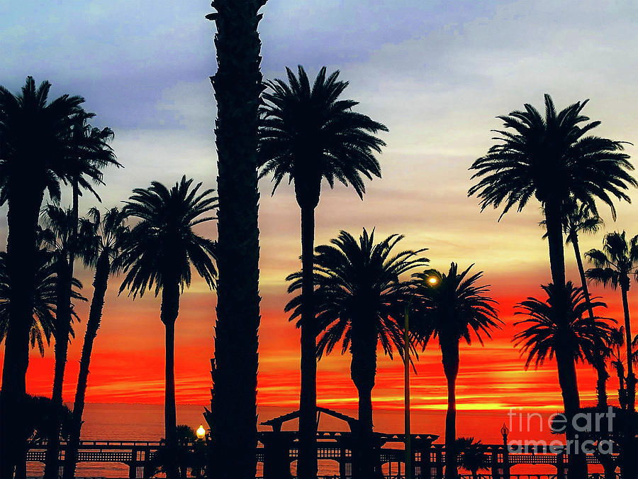 Palm Sunset - No. 3 by Doc Braham