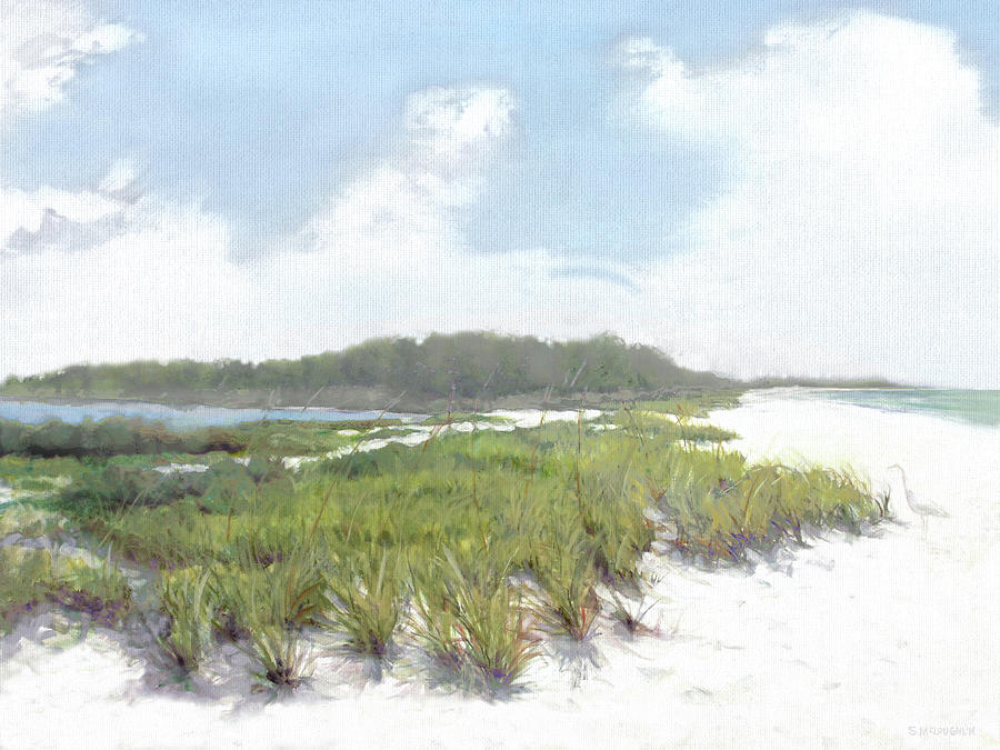 Palmer Point, Siesta Key by Shawn McLoughlin