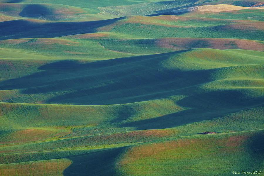 Palouse Land 018 Photograph