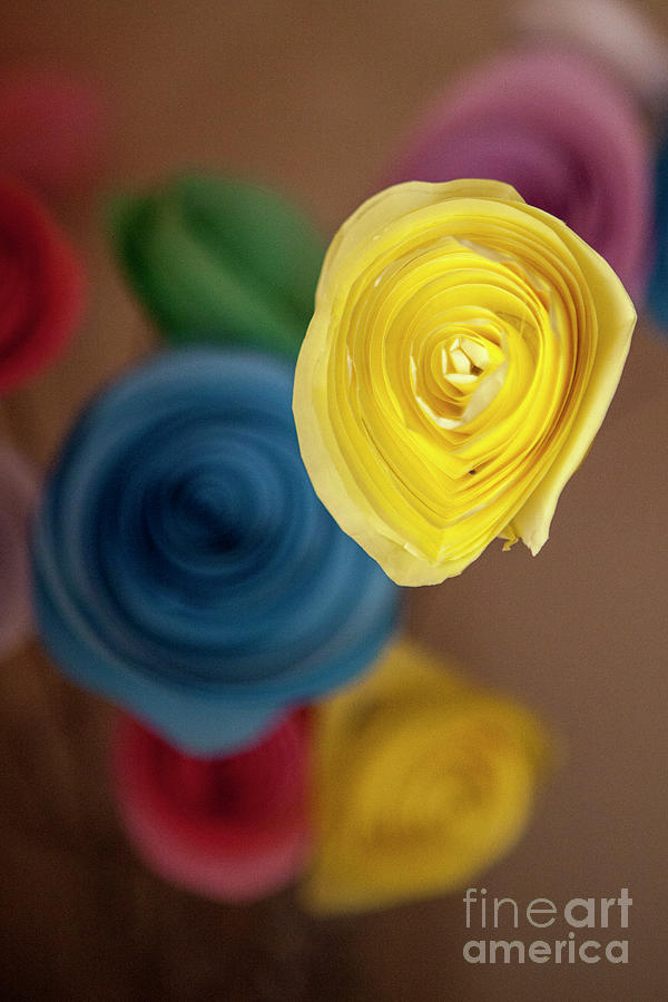 Flowers Photograph - Paper Flowers by Agata Lagati