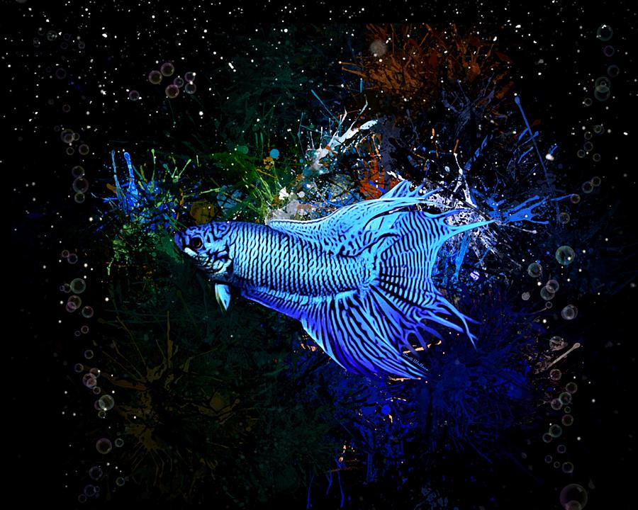 Paradise Gourami Fish Digital Art By Scott Wallace Digital Designs