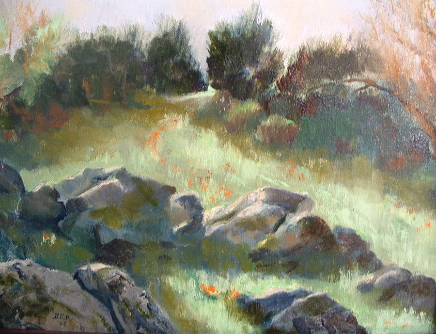 Landscape Painting - Paradise on the road to Rancho Guejito by Bryan Alexander