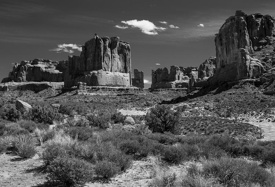 Park Avenue Trail in Black and White by Matthew Irvin