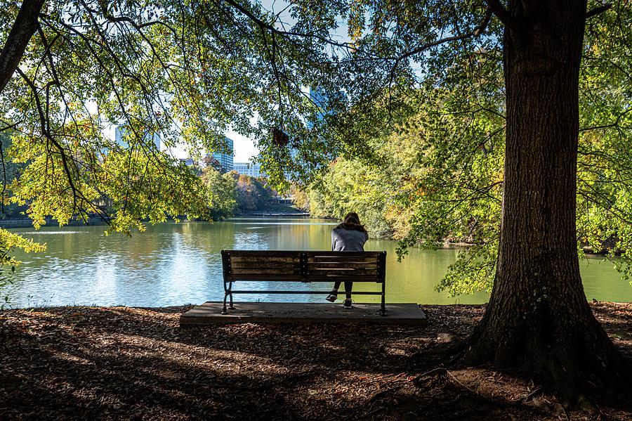 Park View by Randy Scherkenbach