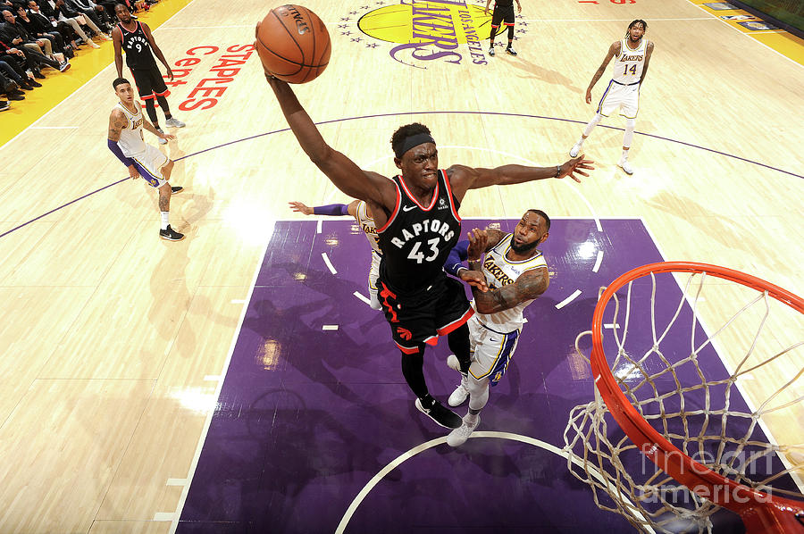 Pascal Siakam Photograph by Andrew D. Bernstein