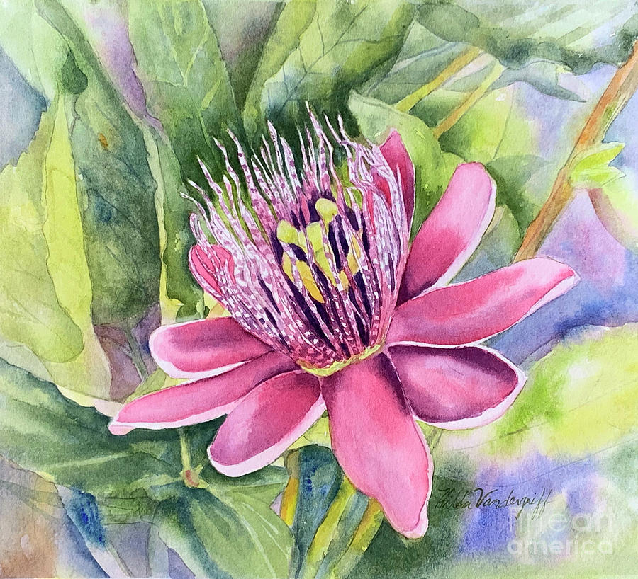 Passion Fruit Flower Painting