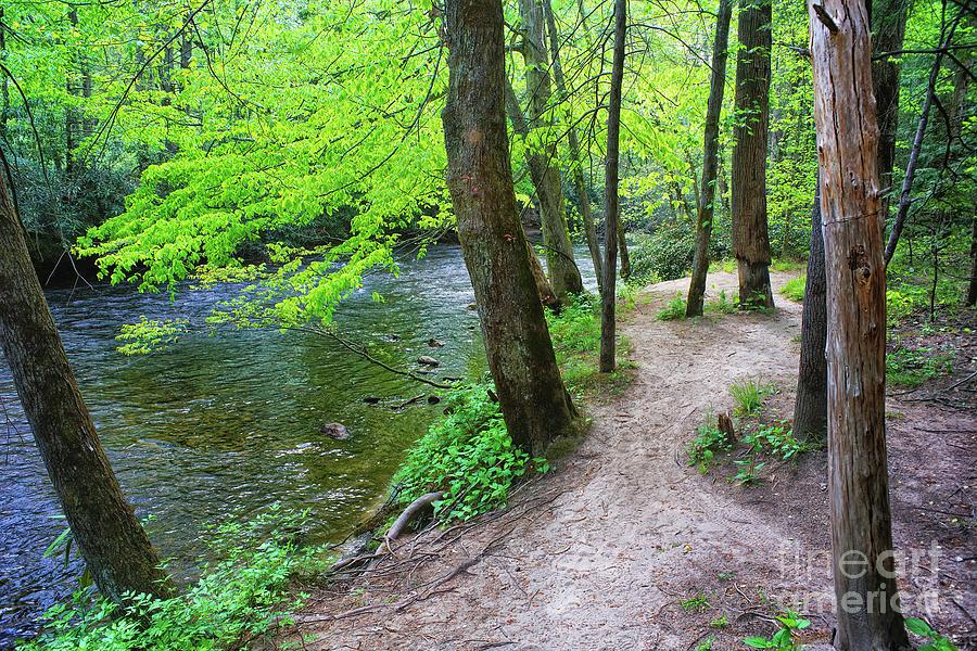 River Photograph - Path Along The River by Felix Lai