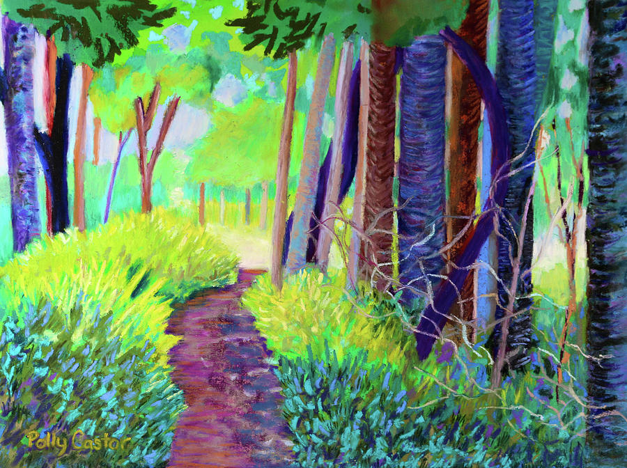 Path on Green Point by Polly Castor