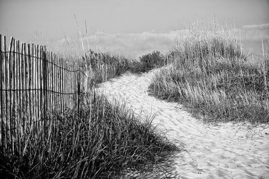Path To Atlantic Beach North Carolina Photograph