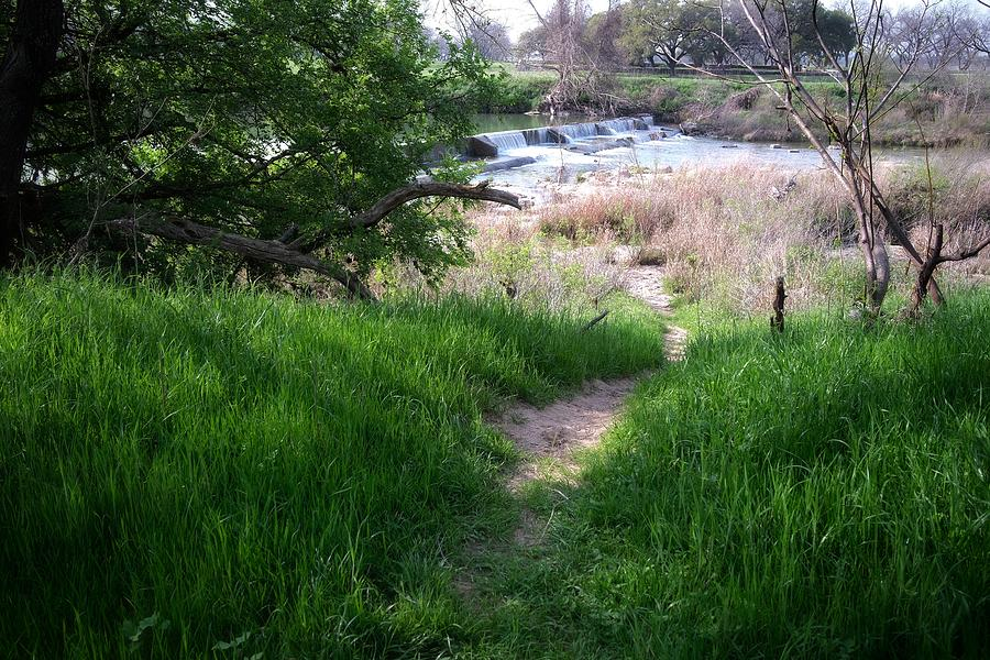 Path To The Pedernales Photograph