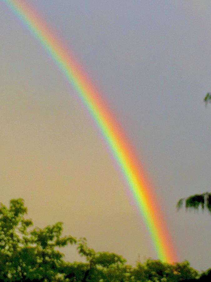 PDX rainbow by Michael Oceanofwisdom Bidwell