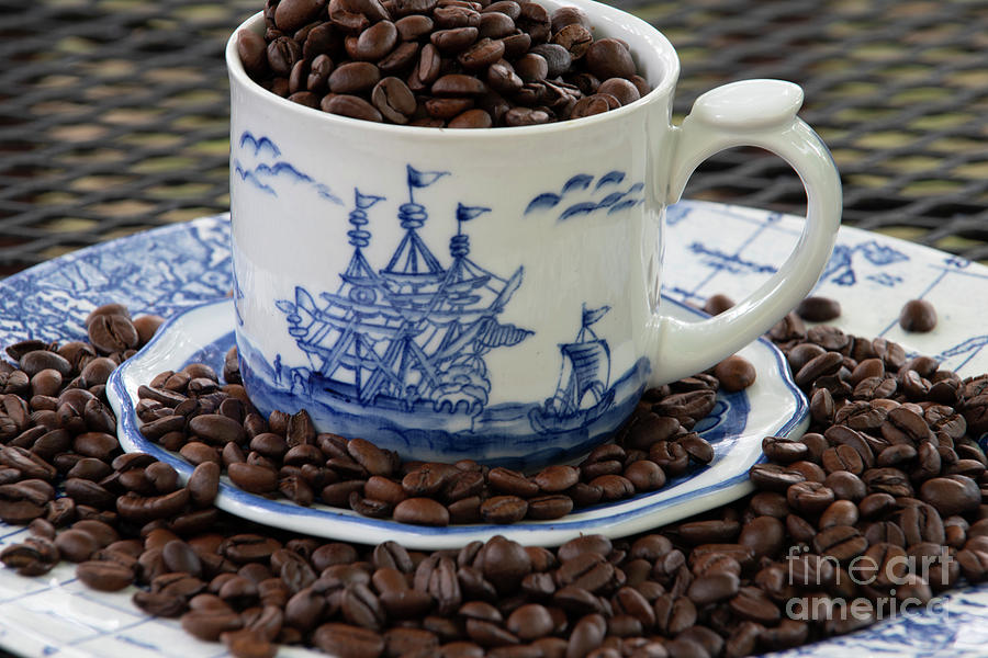 Peaberry Beans Setting Sail Photograph