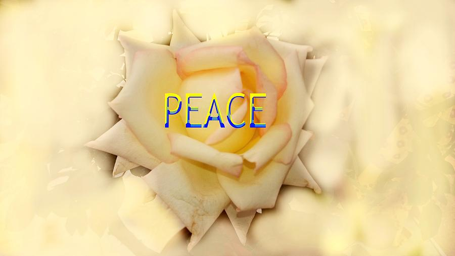 Peace For All Photograph