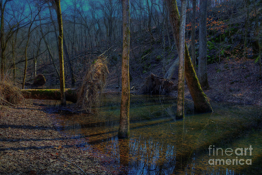 Hdr Photograph - Peaceful Scene  by Larry Braun