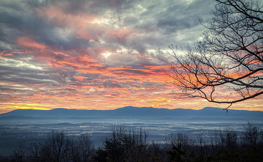 Peachy December Sunrise by Lara Ellis
