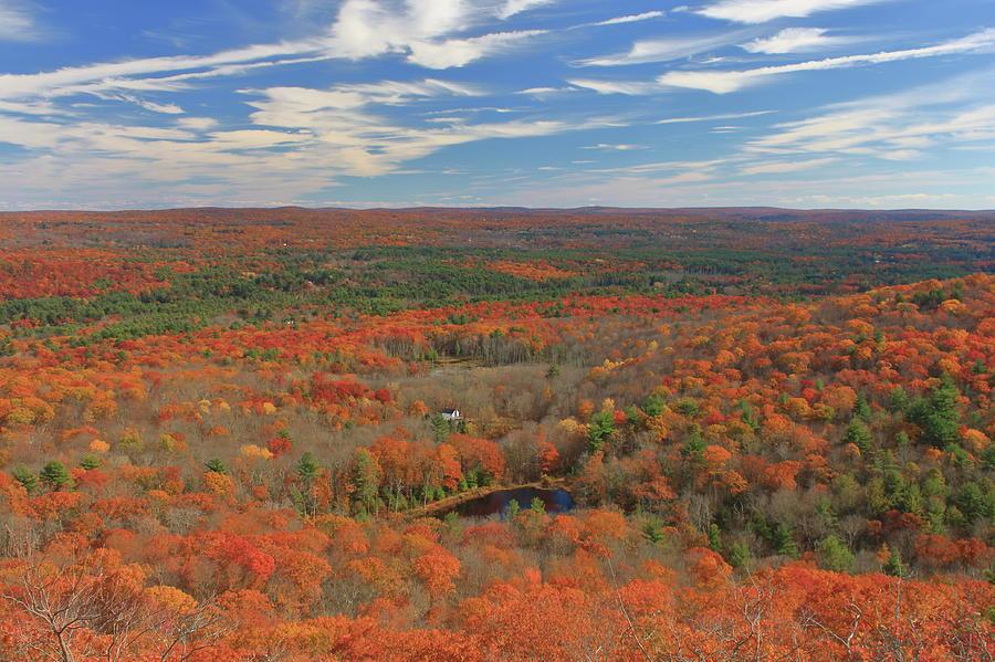 Peaked Mountain Oak Foliage by John Burk