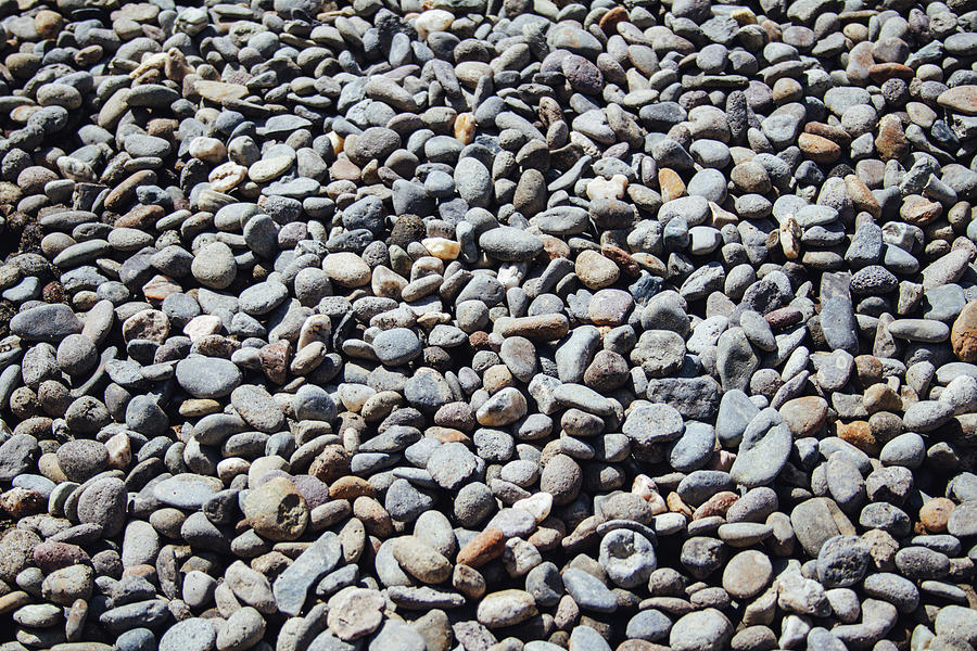 Pebbles Texture, Sunny Day Photograph