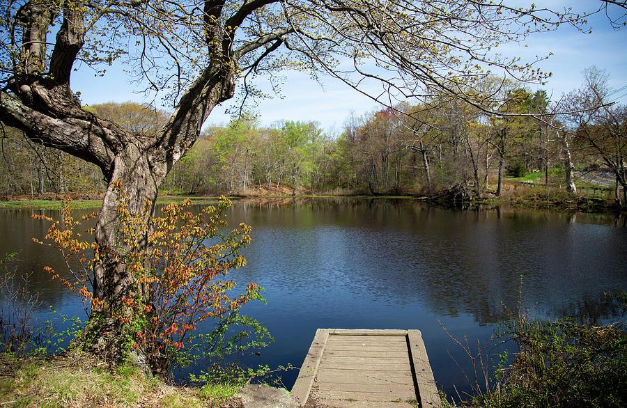 Pecks Pond A Spring Moment Photograph