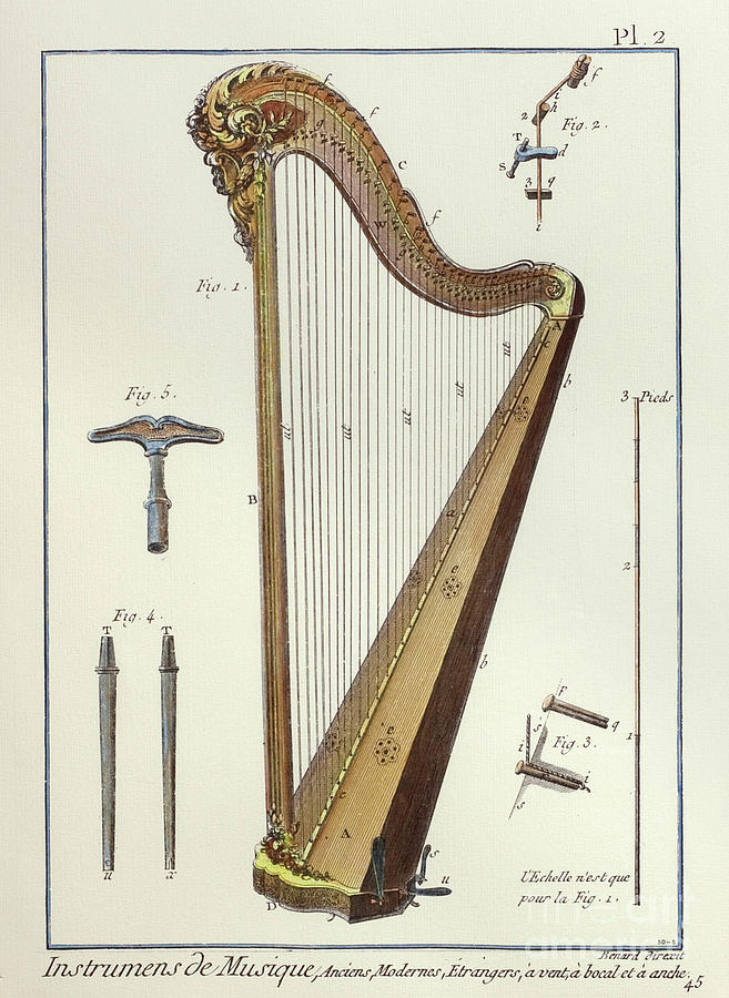 Performing Arts Drawing - Pedal Harp by European School