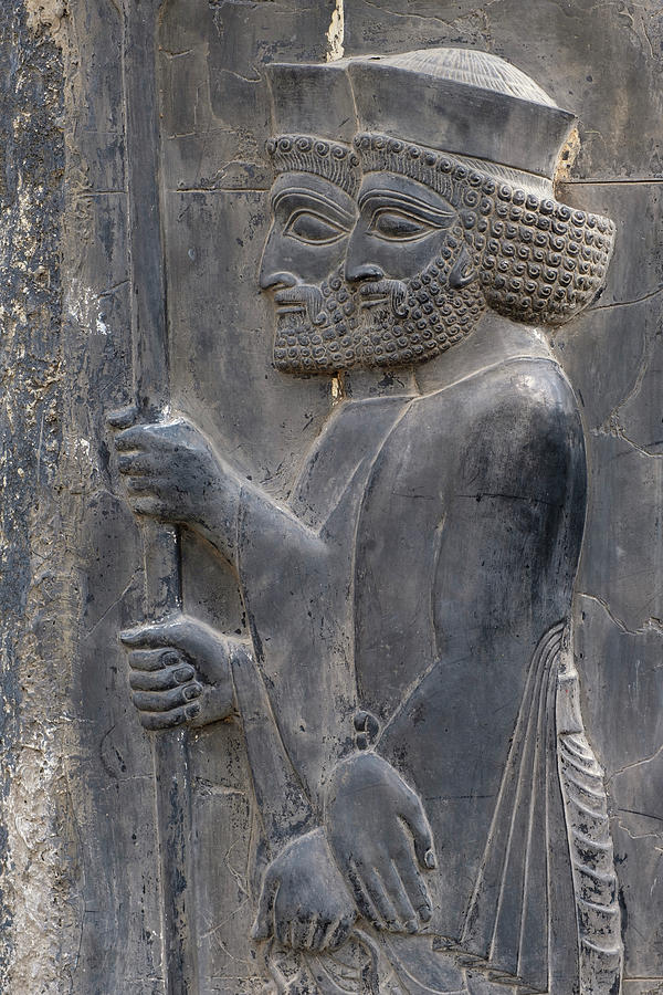 Persian Empire Warriors In Persepolis Iran Photograph By Farzad Frames