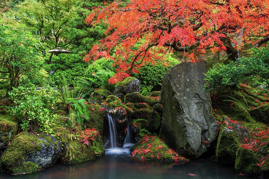 Petite Waterfall Photograph