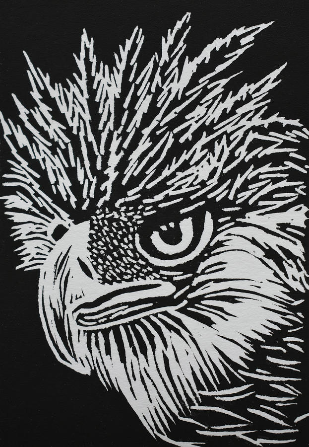 Philippine Eagle Relief
