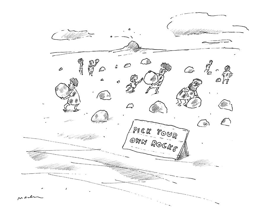Pick Your Own Rocks Drawing by Michael Maslin