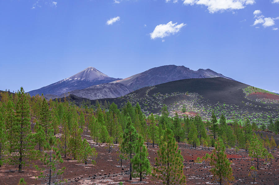 Pico del Teide in Teide National Park by Sun Travels