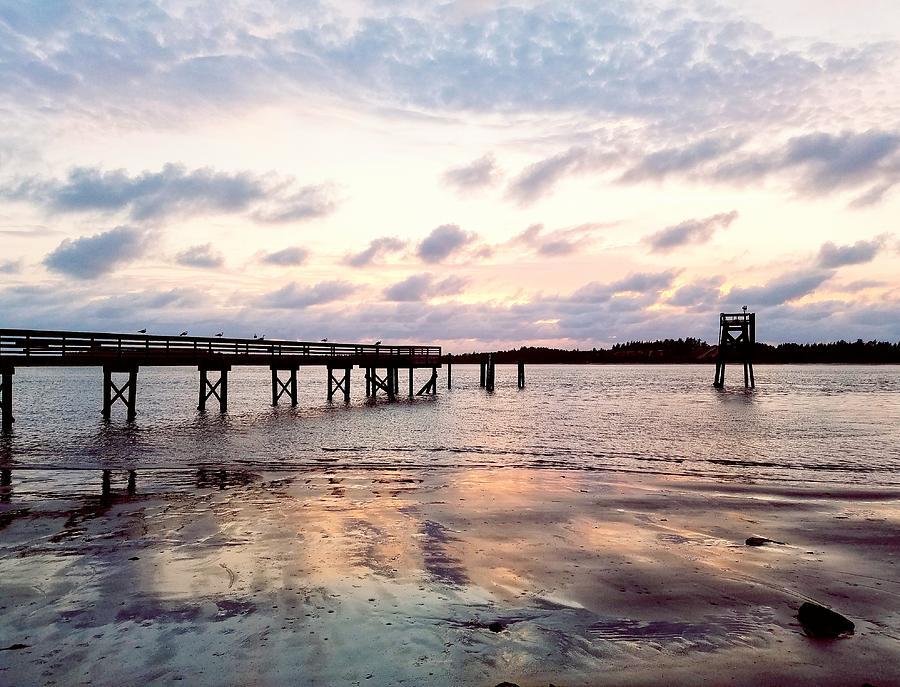 Pier in the Pink by Suzy Piatt