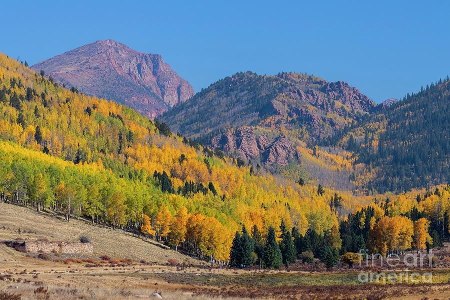 Pikes Peak Autumn Photograph