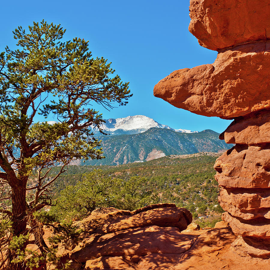 Pikes Peak from Garden of the gods by Edgar Estrada