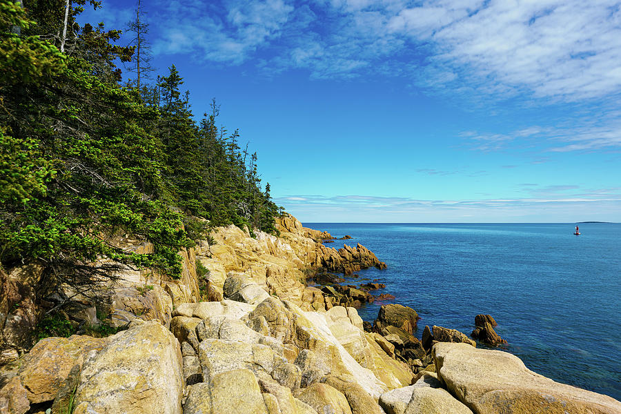 Pine Rocks And Water Photograph