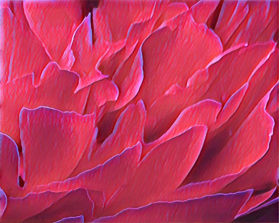 Red Petals by Susan Rydberg
