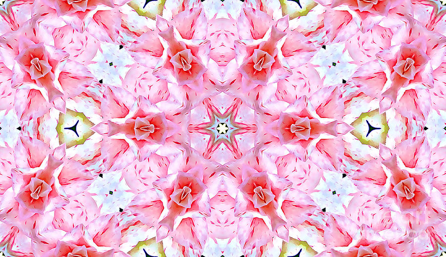 Pink and Red Abstract by Tracy Ruckman