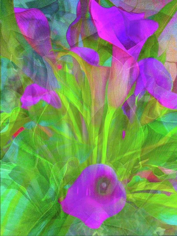Pink Calla Lilies Abstract Photograph