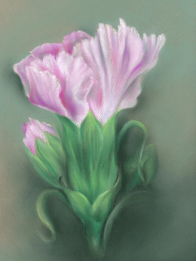 Pink Carnations by MM Anderson