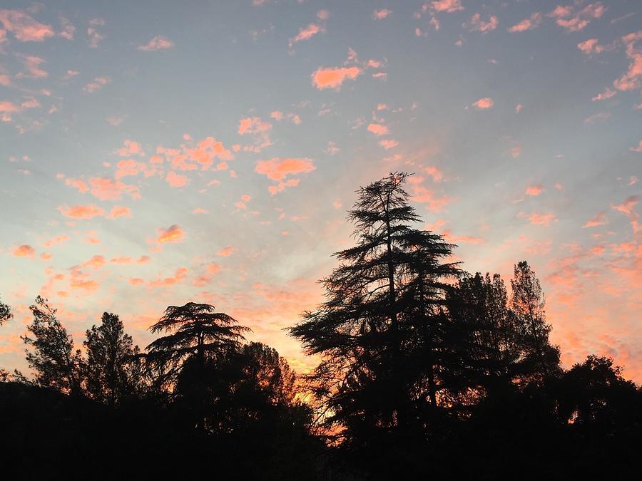 Pink Clouds At Sunset Photograph