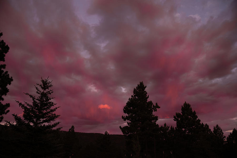 New Mexico Photograph - Pink Clouds Bursting Forth by Lea Rhea Photography