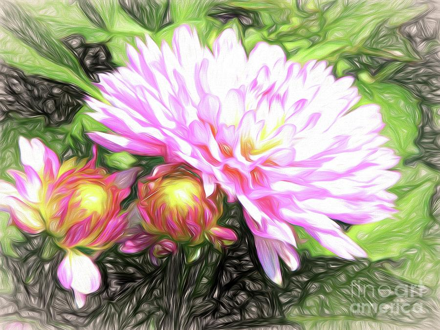 Pink Dahlia Flowers with an Abstract Liquid Pencil Effect by Rose Santuci-Sofranko