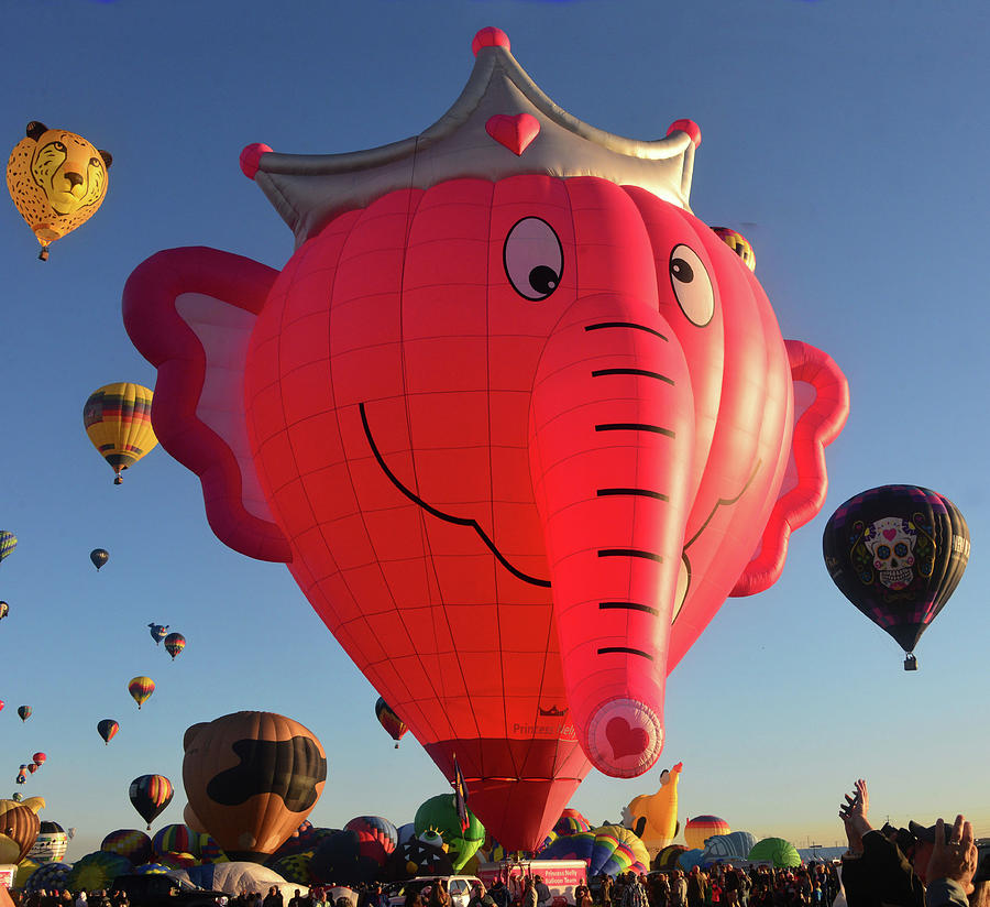 Pink Elephant at the balloon fiesta by David Lee Thompson