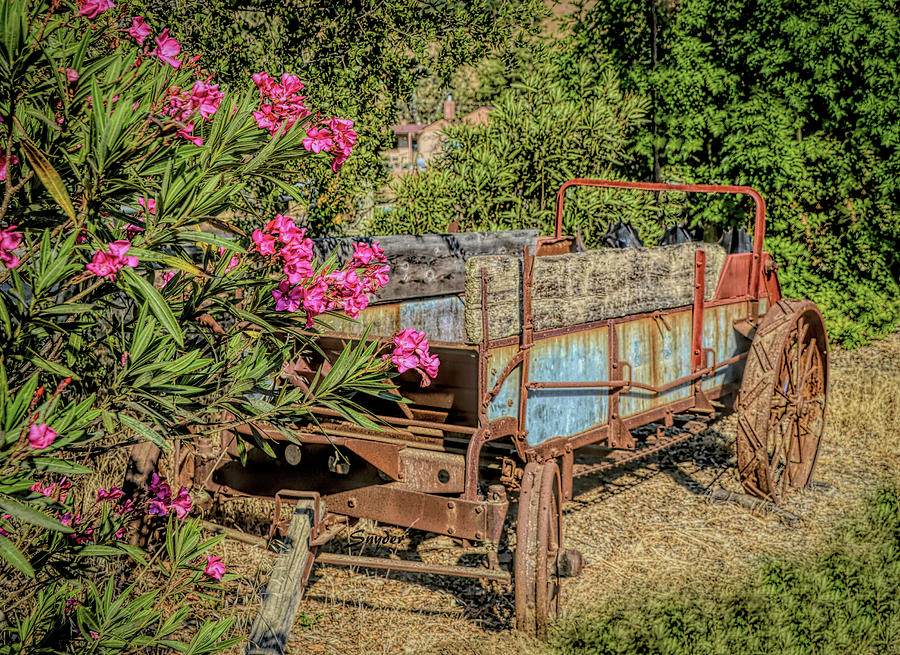 Pink Flowers Rustic Wagon Photograph