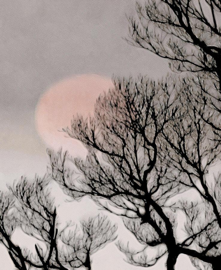 Pink Moon Digital Art