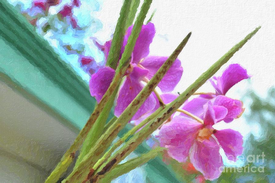 Pink Orchids Digital Art