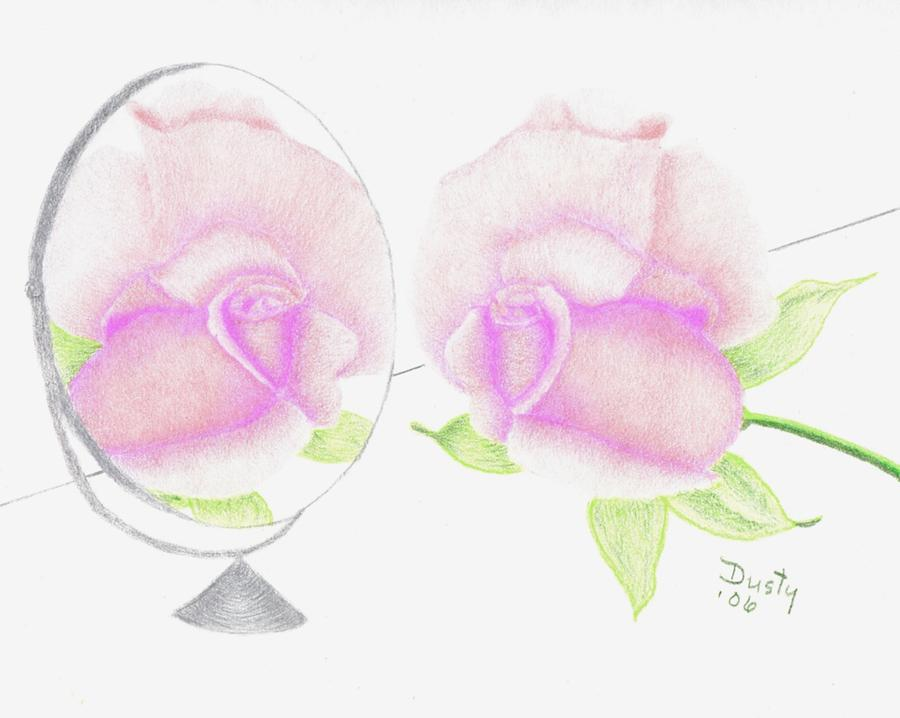 Rose Drawing - Pink Reflection by Dusty Reed