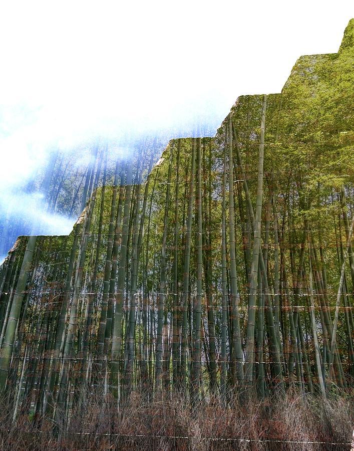 Piramide del Bosque by Kimberly-Ann Talbert