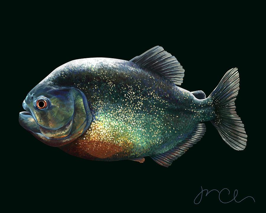Fish Painting - Piranha  by Jennifer Clausen
