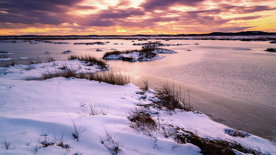 Plum Island Salt Marsh by Michael Hubley