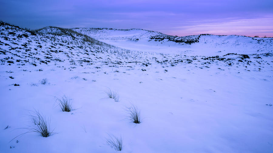 Plum Island, Twilight Dunes by Michael Hubley