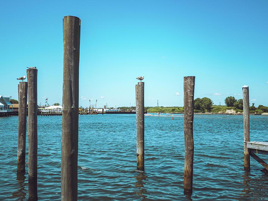 Point Pleasant Piers Photograph