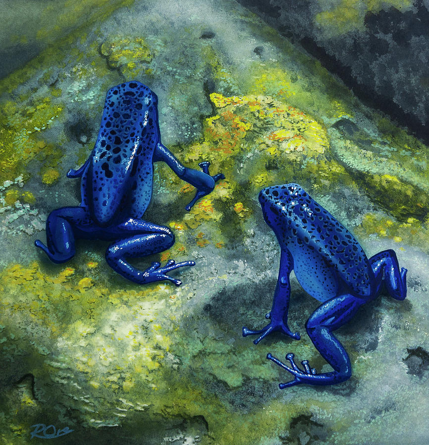 Poison Dart Frogs Painting - Poison Dart Frogs by Raymond Ore